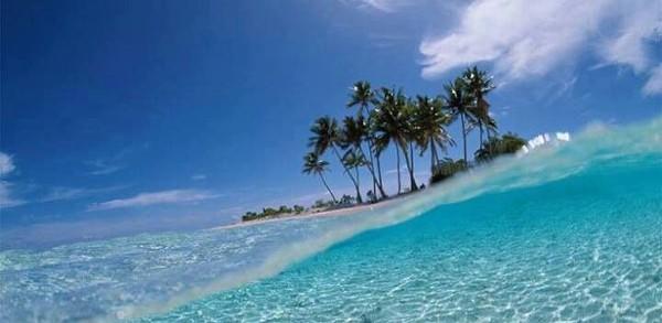 Grand Bahama 101